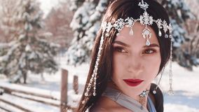 Gorgeous warlike elf queen opens her brown strict eyes, looks at enemy, dark-haired brunette girl with perfect skin. Shows makeup in fabulous image with silver stock video