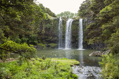 Gorgeous Waterfall in New Zealand Royalty Free Stock Images