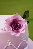 Gorgeous wedding cake Royalty Free Stock Photo