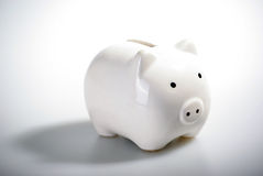 Gorgeous White piggy bank Stock Images