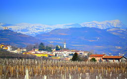 Soave vineyards Veneto North Italy. Beautiful scenic view of vineyards, Soave village and snowy Alps mountains crest in the distance on nice bright blue skies Royalty Free Stock Images