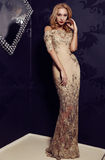 Gorgeous woman with blond hair  in luxurious dress Royalty Free Stock Photo