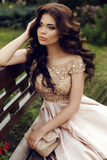 Gorgeous woman with dark hair in luxurious elegant dress. Fashion outdoor photo of gorgeous woman with dark hair in luxurious elegant dress posing at summer park stock images