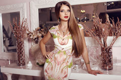 Gorgeous woman with dark straight hair  in elegant dress Stock Image