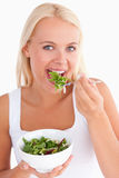 Gorgeous woman eating salad Royalty Free Stock Image