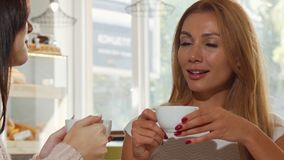 Gorgeous woman enjoying delicious coffee, while chatting with her best friend. Stunning beautiful woman drinking delicious tea, meeting with best friend at stock video footage