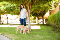 Gorgeous woman walking her dog Stock Photography