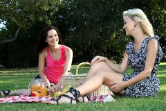 Gorgeous Women  Friends at Picnic Royalty Free Stock Photo