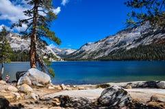 Gorgeous Yosemite National Park, California, USA Stock Images