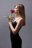 Gorgeous young blond woman holding rose. Stock Photos