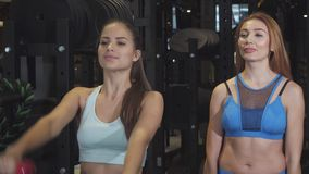 Two female frinds working out together at the gym lifting weights. Gorgeous young fitness women exercising with dumbbells together at the gym workout friendship stock footage