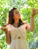 Gorgeous young girl with apples. Gorgeous young girl with sappy apples Stock Photography