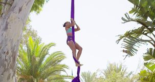 Gorgeous young woman gymnast working out on silks stock video