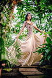 Gorgeous young woman in long evening dress Stock Photo