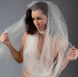 Gorgeous Young Woman in Sheer Fabric Stock Images