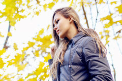 Gorgeous young woman on yellow autumn leaves background Royalty Free Stock Images