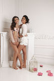 Gorgeous young women with dark hair in elegant home clothes Stock Images