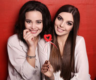 Gorgeous young women with dark hair and evening makeup Royalty Free Stock Image