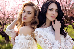 gorgeous young women in elegant dress posing in garden with blossom peach trees royalty free stock images