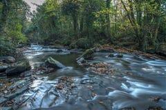 Gorges de Clare 09-11-2016 Image libre de droits
