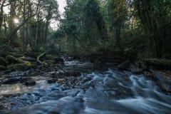 Gorges de Clare 09-11-2016 Photo stock