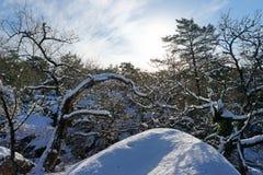 Gorges de Franchard unter Schnee in Fontainebleau-Wald stockfotografie