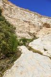 Gorges de paysage Photo libre de droits