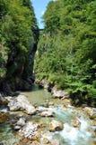 Gorges de Tolmin Image stock