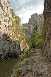 Gorges de Turda Photographie stock
