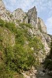 Gorges de Turda, pointeau de cap Photos libres de droits