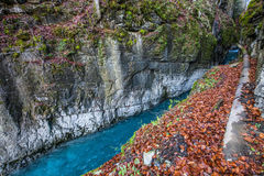 Gorges des Tines, France II. The deep limestone Gorge des Tines at Sixt Fer a Cheval, France Royalty Free Stock Photos