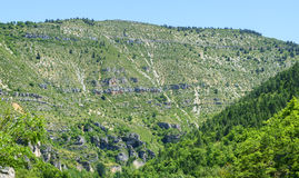 Gorges du Tarn. (Lozere, Linguedoc-Roussillon, France), famous canyon at summer Stock Images