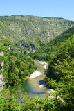 Gorges du Tarn. (Lozere, Linguedoc-Roussillon, France), famous canyon at summer Stock Photo