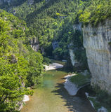 Gorges du Tarn. (Lozere, Linguedoc-Roussillon, France), famous canyon at summer Royalty Free Stock Images