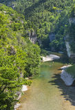Gorges du Tarn. (Lozere, Linguedoc-Roussillon, France), famous canyon at summer Stock Photography