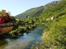 Gorges of the Tarn. France Stock Photo