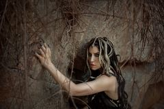 Gorgon水母、辫子头发和金子的图象曲折前进,特写镜头画象 哥特式构成在绿色树荫下 背景  库存图片