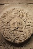 Gorgon's Head Royalty Free Stock Image