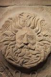 Gorgon's Head Royalty Free Stock Image