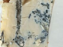 gorgonzola Stockbild