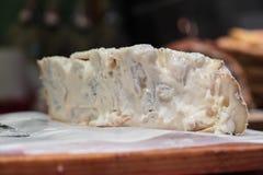 gorgonzola obrazy stock