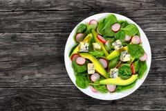 Gorgonzola, avocado, spinach, red radish salad Royalty Free Stock Image