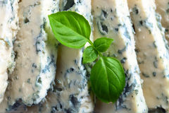 Gorgonzola cheese with basi Stock Photo