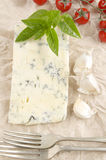 Gorgonzola cheese on kitchen paper Royalty Free Stock Images