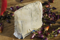 Gorgonzola cheese Stock Image