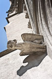 Gorgoyle – gothic detail from the facade of St. Othmar's church in Vienna Stock Image