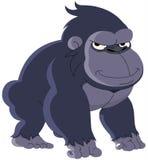 Gorila Fotos de Stock