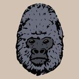 顶头gorila 图库摄影