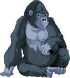 Gorila de assento Imagens de Stock Royalty Free