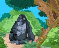 Gorila de assento Fotografia de Stock Royalty Free